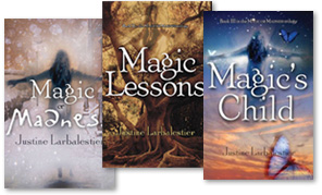 covers of the Magic or Madness books